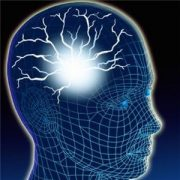 Estudiar Psicología | Conoce las distintas escuelas y áreas de la psicología