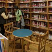 Qué estudiar para ser bibliotecario   Requisitos y Oportunidades