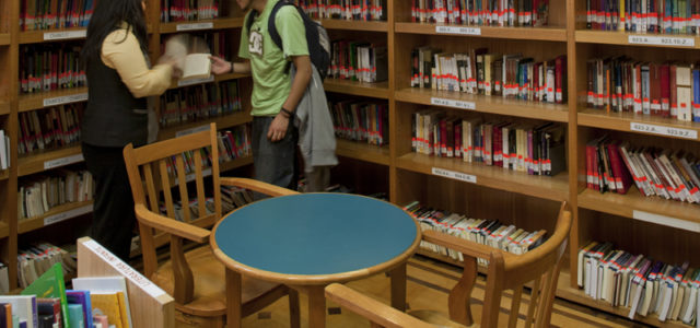Qué estudiar para ser bibliotecario | Requisitos y Oportunidades