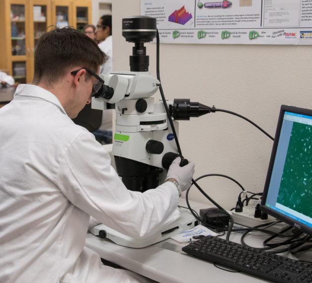 Estudiar Ingeniería Biomédica