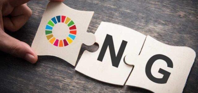 Qué estudiar para trabajar en una ONG