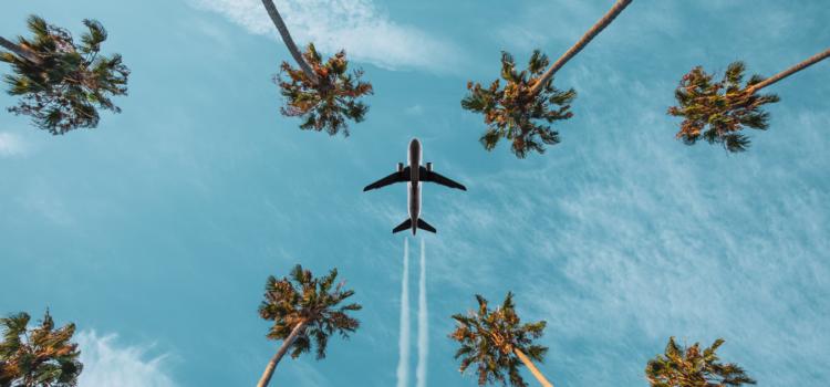 Carreras en turismo: Estudios y Oportunidades